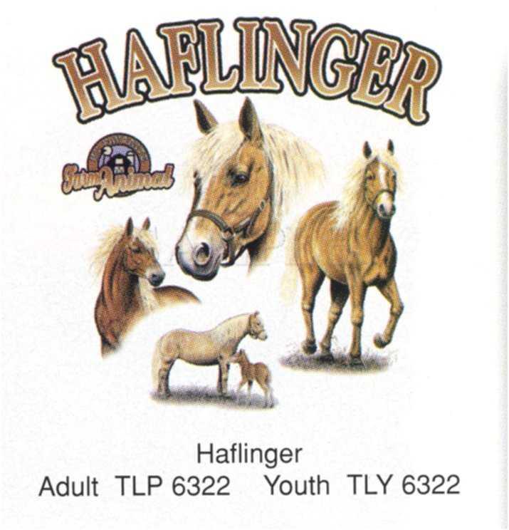 dessin cheval haflinger