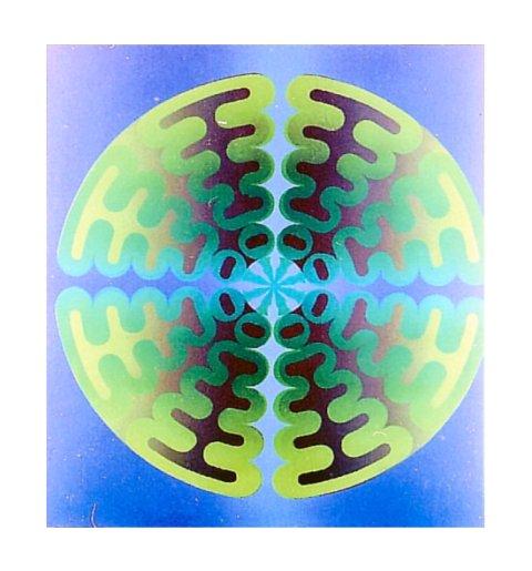 http://images.populus.ch/pixdir/im//imagiris/Gr.Blume.jpg