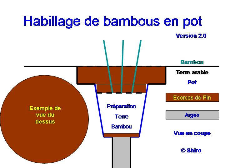 habillage de bambous en pot forum des fous. Black Bedroom Furniture Sets. Home Design Ideas
