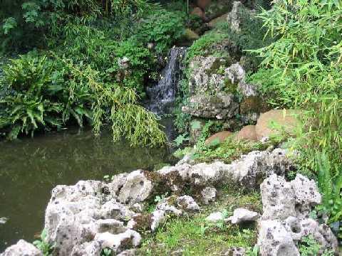 Le jardin aquatique de shiro for Jardin chinois miniature